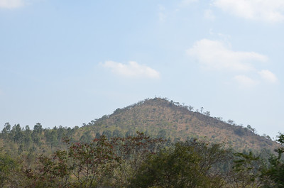 On the way to Ooty from Mysore