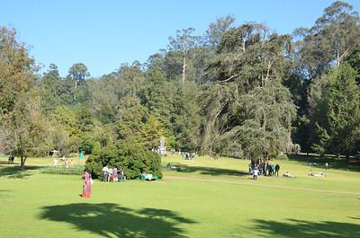 Government Botanical Gardens, Udhagamandalam (Ooty)