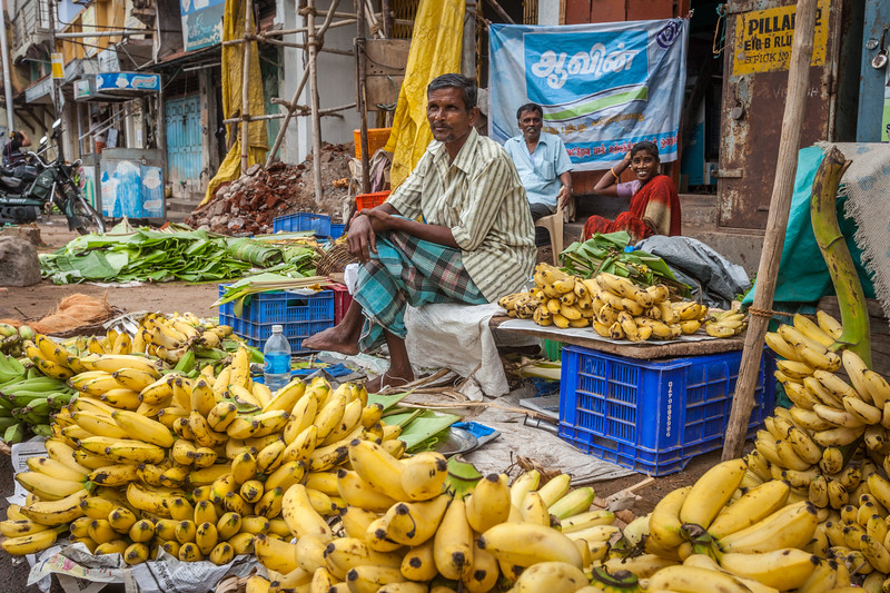 TIRUCHIRAPALLI, INDIA - FEBRUARY 14, 2013: Unidentified Indian man - hawker (street vendor) of bananas