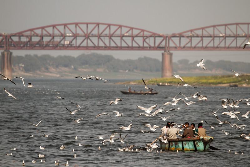 India, Varanasi, 2013