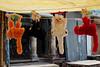 Monkey souvenirs?!