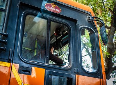 Delhi Bus Driver