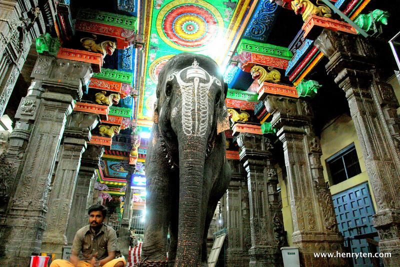 Meenakshi Sundareshwarar Temple, Madurai
