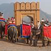 Elephant ride at Amer Palace, Jaipur, India