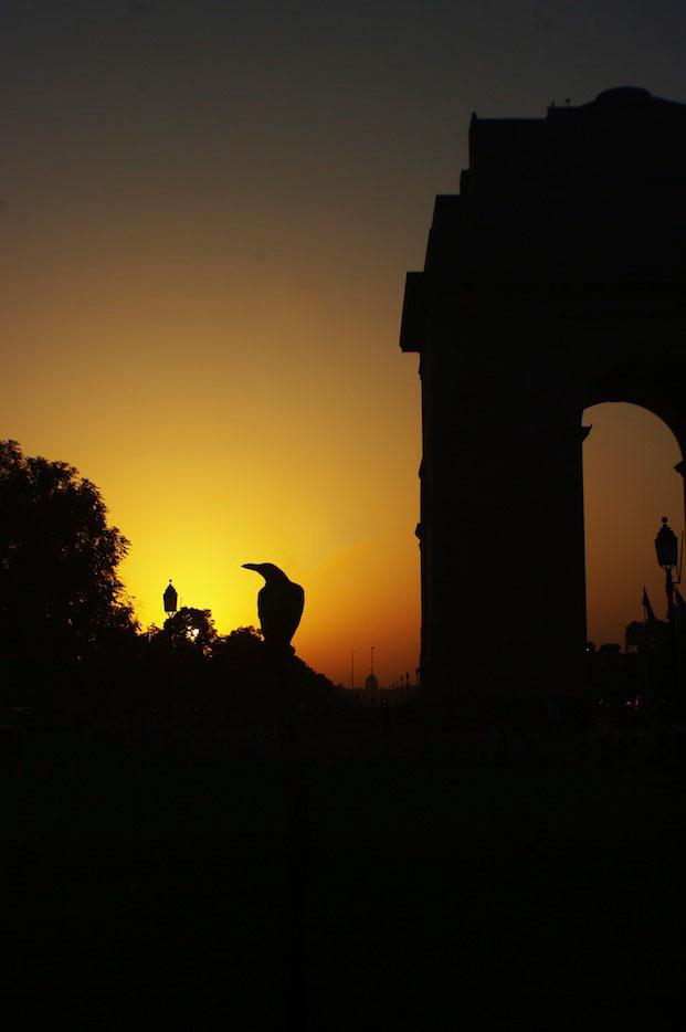 India Gate, New Delhi 2010