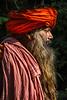 Patriarch in Profile