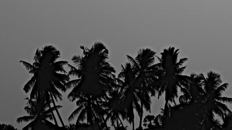 Chennai, India