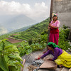Women from Raithal separating the husk of the recently harvested brown rice of the Himalayas