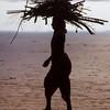 Woman carries firewood, Arambol, Goa, India.