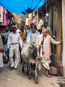 Street Scene, Old Varanasi