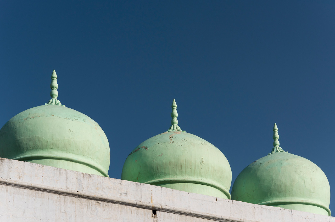 Green Mosque Domes, Pushkar