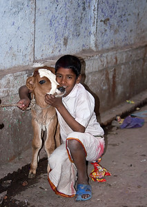 Young boy and his calf - India