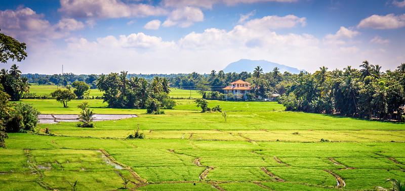 Sri Lanka, Polonnaruwa