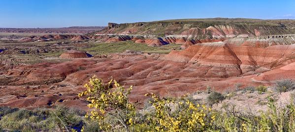 Near Painted Desert