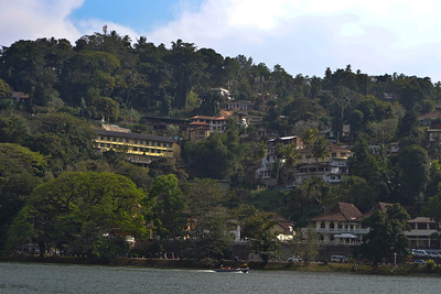 The hills of Kandy
