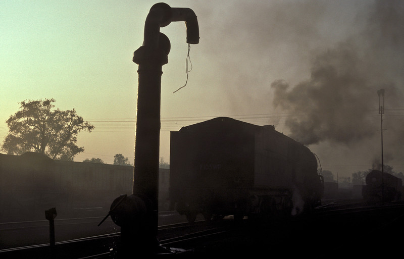 A study in steam as WP7103 is silhouetted in the shed yard at Saharanpur on 17 February 1992