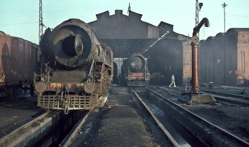 A view of the running shed at Saharanpur with WP7591 and WP7041 to the fore on 17 February 1992