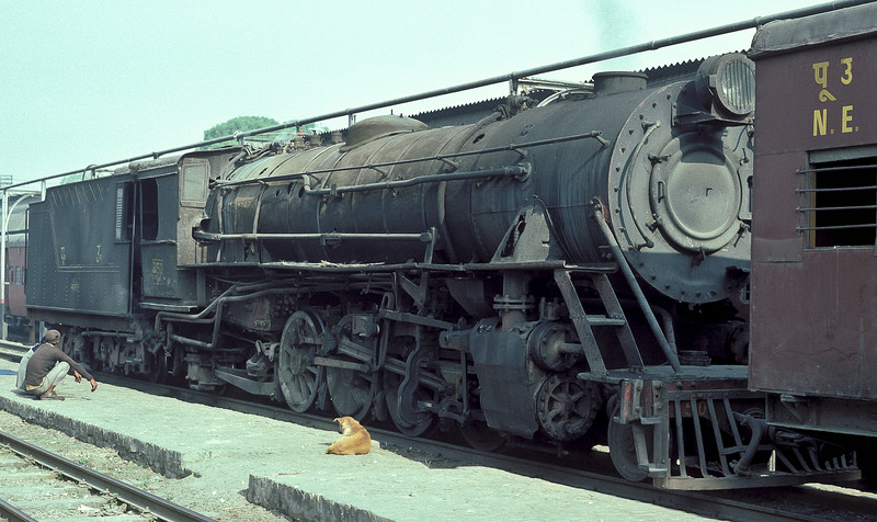 Even the dog is taking a rest! YG3180 pauses between duties at Samastipur Junction on 22 February 1992