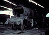 Under heavy repair, WG8102 is in the roundhouse at Moradabad on 18 February 1992