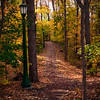 Dunns Woods at Indiana University on a Fall Evening
