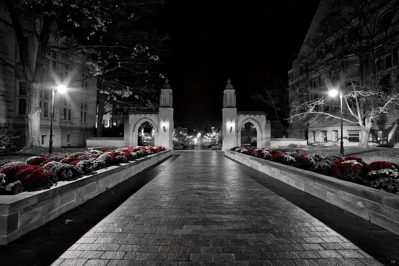 Indiana University Sample Gates Night Black White Red Flowers