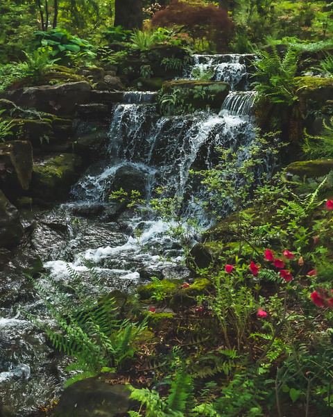 Azalea Path Arboretum and Botanical Gardens in Hazleton Indiana