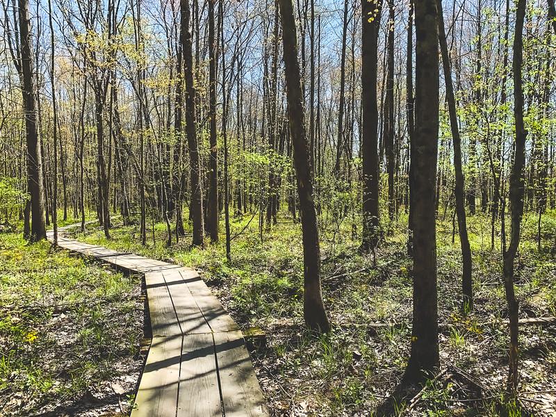 Beanblossom Bottoms Nature Preserve in Ellettsville Indiana