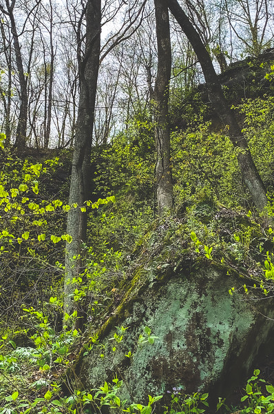 Bluffs of Beaver Bend Nature Preserve in Shoals Indiana