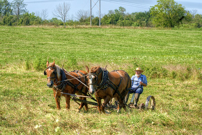 An Amish man works on a farm in Grabill, IN on Thursday, August 13, 2015. Copyright 2015 Jason Barnette