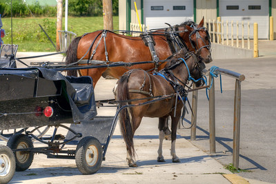 A horse drawn carriage in a parking space, a common sight, in Grabill, IN on Thursday, August 13, 2015. Copyright 2015 Jason Barnette