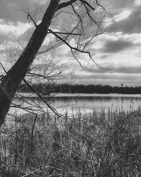 Hawthorn Park in Vigo County Indiana