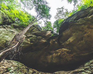 Hemlock Cliffs in Hoosier National Forest near English Indiana