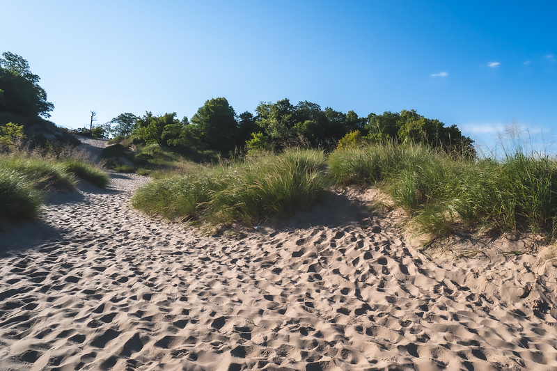 Indiana Dunes State Park in Porter Indiana