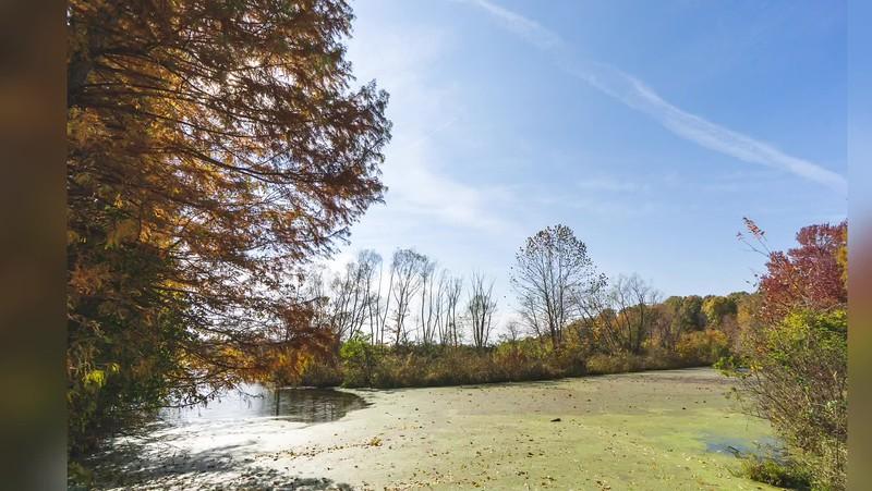 2018 Indiana: Hawthorn Park and Prairie Creek Park in Vigo County Photo Slideshow