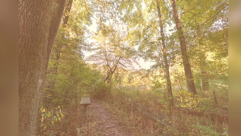 2019 Indiana: Dobbs Memorial Park in Terre Haute Photo Slideshow