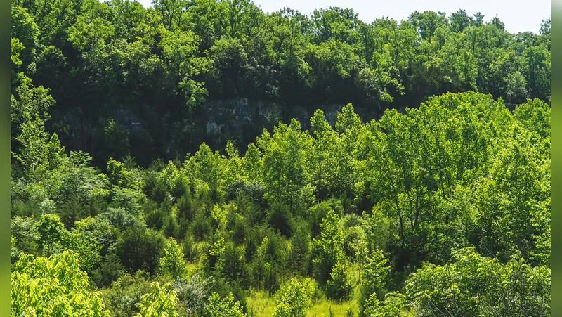 2019 Indiana: Depauw Nature Park in Greencastle Photo Slideshow