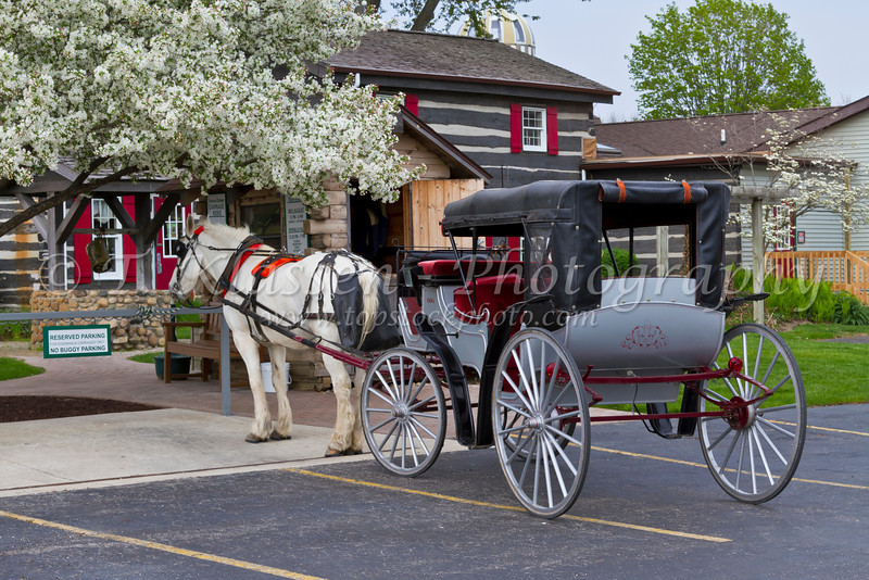 A horse and carriage for hire at the Essenhaus farm in MIddlebury, Indiana, USA.