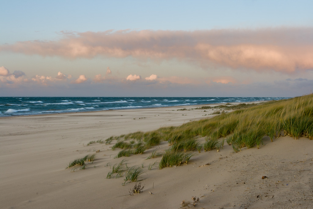 High winds comb the dune grasses and create white cap waves on the shores of Kemil Beach. Laporte County, IN<br /> <br /> IN-081026-0082