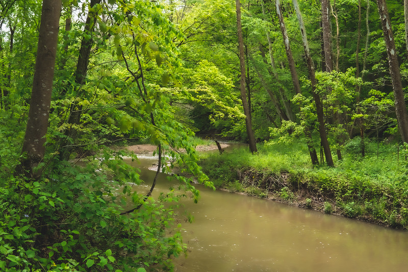 Portland Arch Nature Preserve in Fountain County Indiana