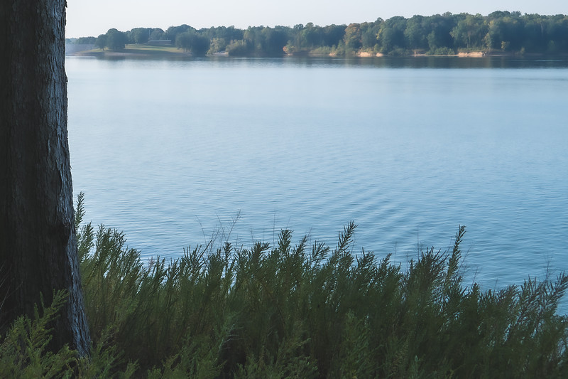 Raccoon State Recreation Area in Rockville Indiana
