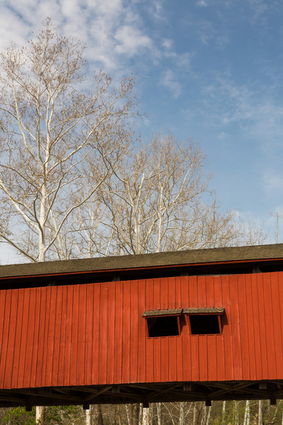 Sycamore trees tower above the Deers Mill Covered Bridge. Montgomery County, IN<br /> <br /> IN-140427-0073