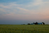 Amish farm in Elkhart County, IN<br /> <br /> IN-100530-0064