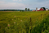 A clump of thistle grows by a farm fence in Elkhart County, IN<br /> <br /> IN-100531-0038