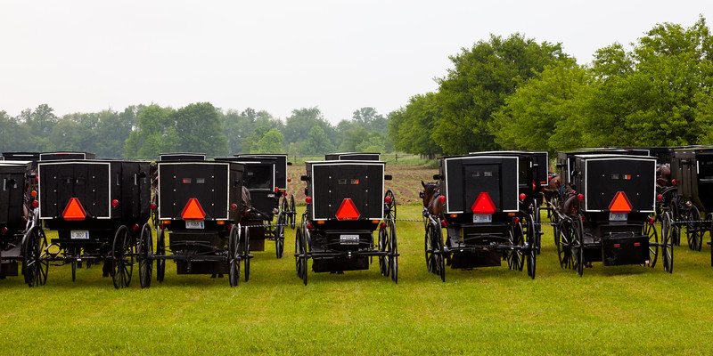 An auction in Elkhart County brough together the Amish community to a field outside Shipshewana. Buggies were parked three to four deep. Elkhart County, IN<br /> <br /> IN-100531-0063