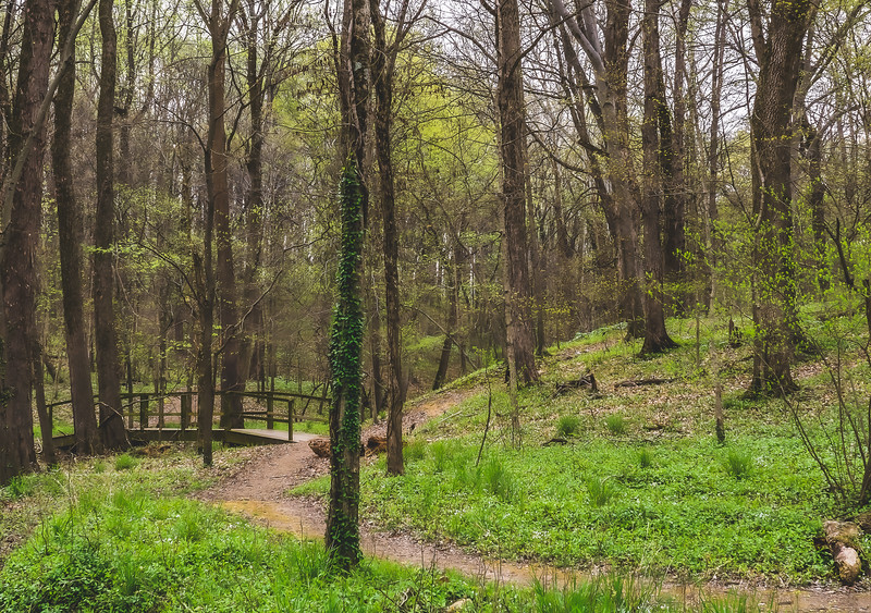 Ouabache Trails Park in Knox County Indiana
