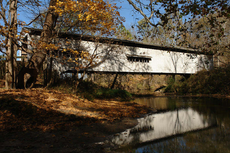Portland Mills Bridge - Turkey Run State Park, Indiana - Mary Anderson - October 2010