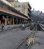 Darjeeling Himalayan Rly station, Darjeeling, Thurs 29 March 2012 3.