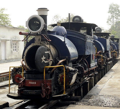 Darjeeling Himalayan Rly 0-4-0T Nos 788 Tusker, 792 Hawkeye & 802 Victor, Siliguri Junction shed, Tues 27 March 2012.  Three of the B class locos which have become a DHR trade mark stand on shed.  In all, 34 B class locos were built between 1889 and 1927.  By 2012, 30 suvived and 13 were still in use on the DHR.  I saw ten - Nos 780, 782, 786, 788, 791, 792, 795, 802, 804 and 805.  I did not see Nos 779, 787, or 806.  Nor did I see converted Nos 1001 and 1002.  Of the remainder, No 794 was on the Matheran Light Rly near Mumbai, four were at a colliery in Assem, and ten had been preserved at various locations.