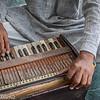 David Altschul-Pushkar trip-4