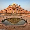 David Altschul-Pushkar trip-2